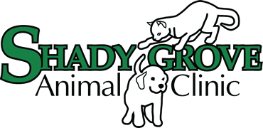 Shady Grove Animal Clinic